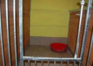 - pokój 1 - zdjęcie 956