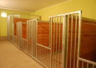 - pokój 1 - zdjęcie 966